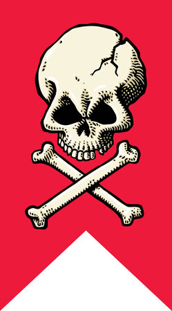Skull Flag Vector