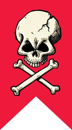 Skull Flag Stock Vector - 8885231