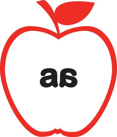 noyau: Coupe transversale de la pomme