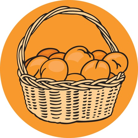 Basket of Oranges Vector