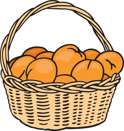 hamper: Basket of Oranges Illustration