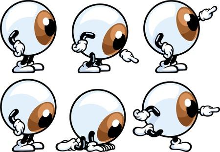 globo ocular: Ojo individuo