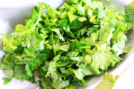 culantro: cilantro fresco