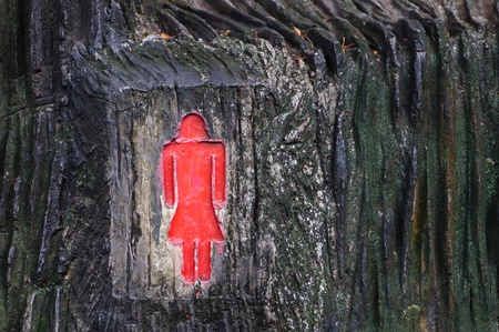 Female toilet signs Made of wood  photo