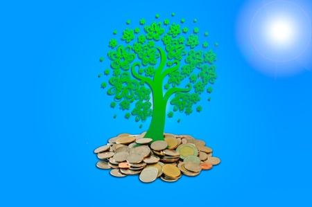 Money Tree growing from a pile of coins and a light blue background photo