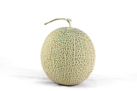 cantaloupe melon isolate on a white background photo