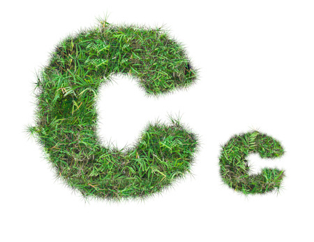 letter C on green grass isolated on over white background Stockfoto