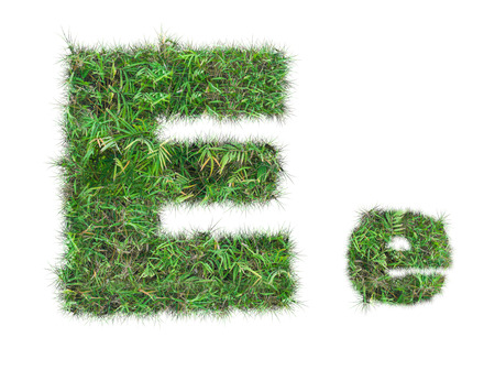 letter E on green grass isolated on over white background