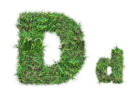 letter D on green grass isolated on over white background