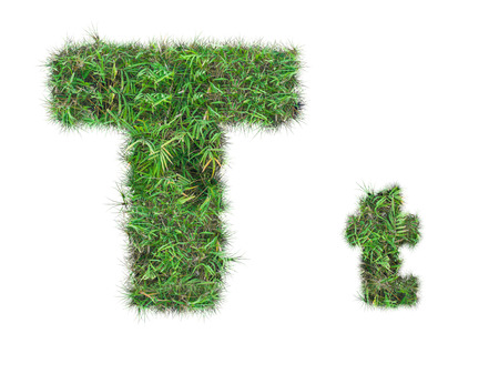 letter T on green grass isolated on over white background Stockfoto