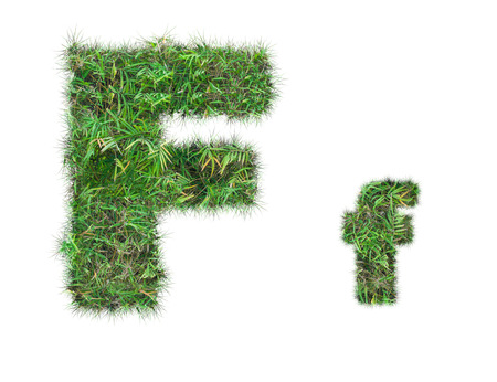 letter F on green grass isolated on over white background
