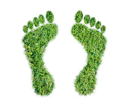 白い背景の上の緑の草のエコロジカルフット プリントの概念 写真素材