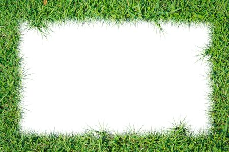 Green grass frame on over white background photo
