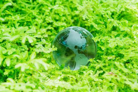 Environment concept glass globe in green grass photo