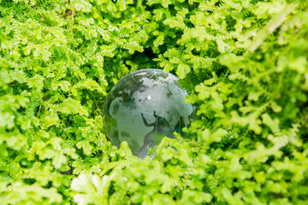 Environment concept glass globe in green grass photo