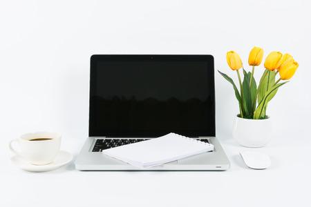 economic botany: Laptop and flower pot isolate on white background Stock Photo