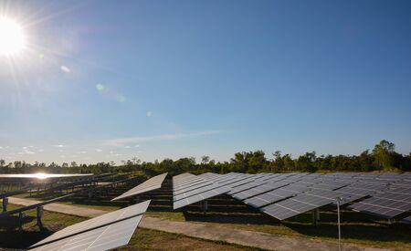 photocell: Photovoltaic solar energy panels farm for renewable energy or electricity with blue sky