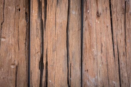 aging: texture old tree wood background, aging wooden