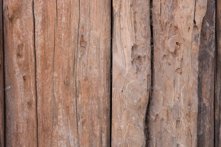 materia: texture old tree wood background, aging wooden