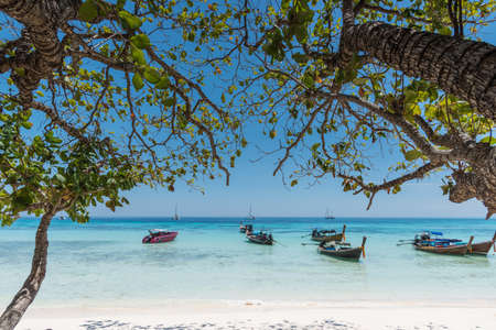 long tail: Sea Beach with Long tail boat and Leaves of tree background at Thailand