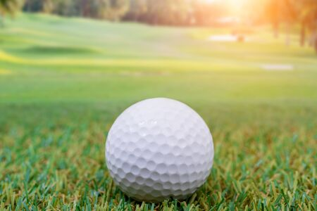 cut the competition: Golf ball in field on the green grass