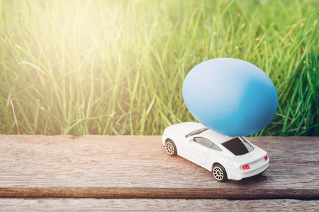 Easter egg and Car on garden grass background, Happy easter day concept
