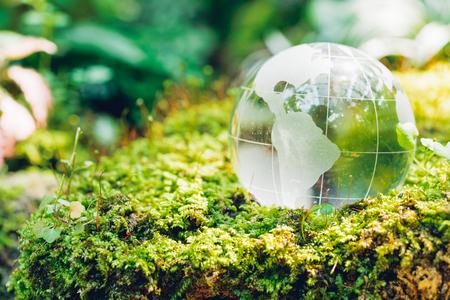 Globo de vidrio en el bosque de hierba sobre fondo de naturaleza, concepto de día del medio ambiente