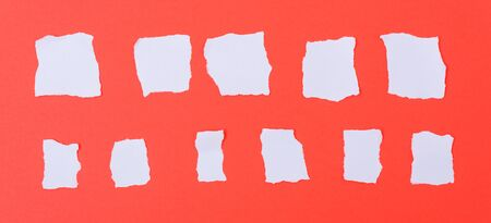White paper torn into words on a red background Stockfoto - 133819013