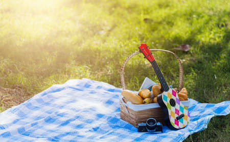 Picnic wattled basket with bread food and fruit, Ukulele, a retro camera on blue cloth in green grass garden with copy space at sunny summertime