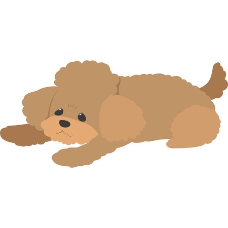 Humbled to dog (toy poodle) Stock Illustratie