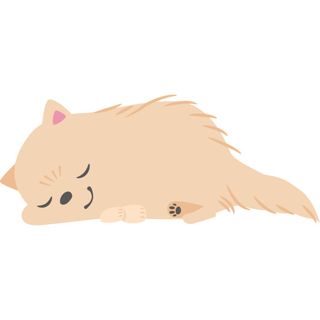 Sleeping dogs (Pomeranian)