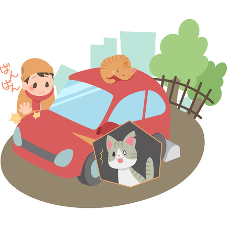 Bang Bang cat