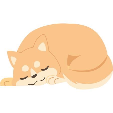 Sleeping dog (Shiba Inu)