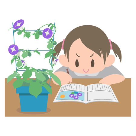 Morning glory observation diary girl Illustration