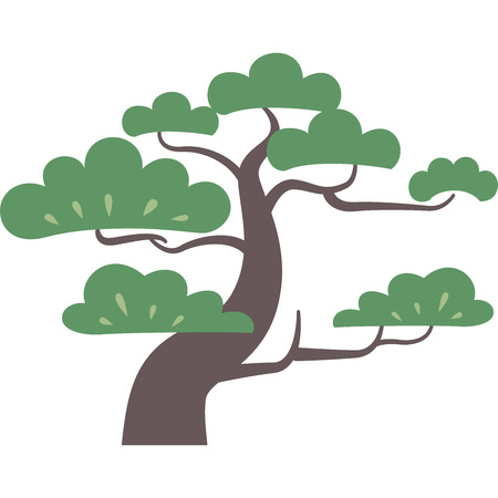 Pine trees isolated on white Illustration
