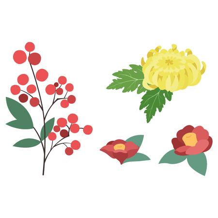 Southern  mum  Camellia illustrations set