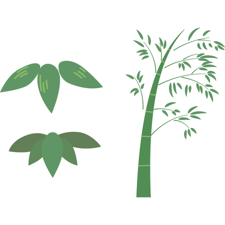 Bamboo parts isolated on white Illustration