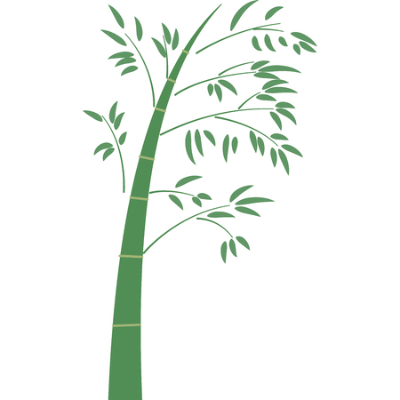 Bamboo isolated on white Imagens - 105529554