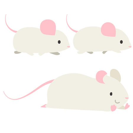 Mouse walking