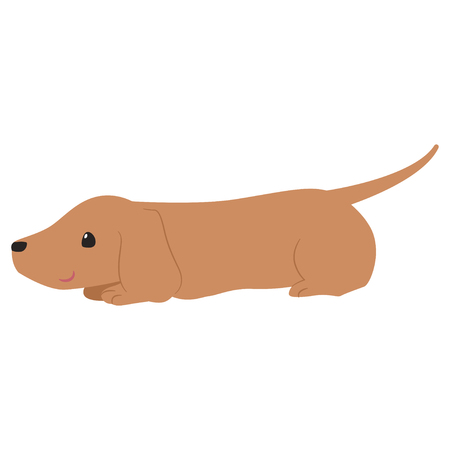 Dachshund lie illustration