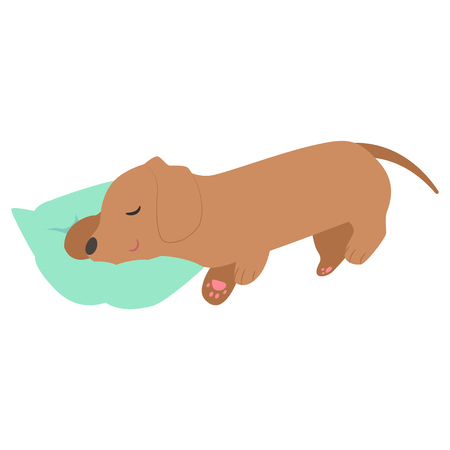 Sleeping Dachshund illustration Иллюстрация
