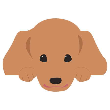 Dachshund face title illustration