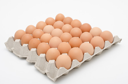 egg in tray photo