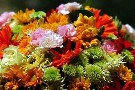 Mixed flowers in a colorful