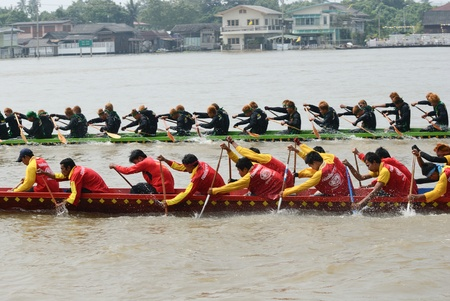 Longboat racing Traditional Culture ,Nonthaburi,Thailand Stock Photo - 15317711