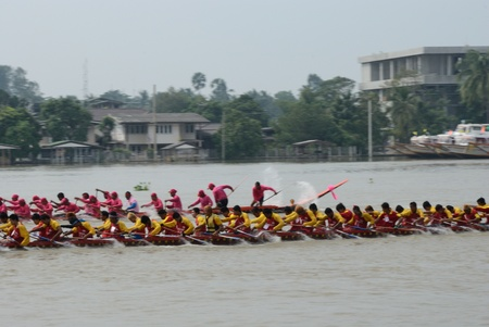 Longboat racing Traditional Culture ,Nonthaburi,Thailand Stock Photo - 15317721