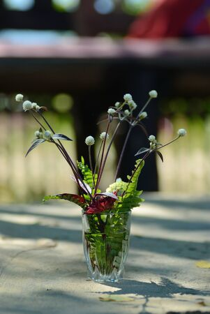 Flowers and green fern leaf in vase