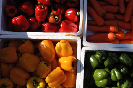Carrot and red, green and yellow Bell Peppers in Styrofoam storage box