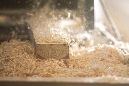 Proces piłowania deski piłą łańcuchową