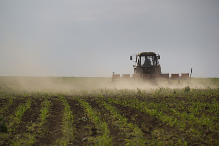 Tractor cultivating land on a field at summer day Stock Photo